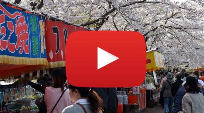 Ohanami – Viewing the Sakura
